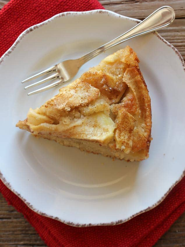 apple and cinnamon cake /anitalianinmykitchen.com