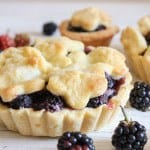 Fresh Blackberry Mini Pies, an easy homemade pie recipe. The best mini pie dessert made with a flaky pie pastry and delicious filling.