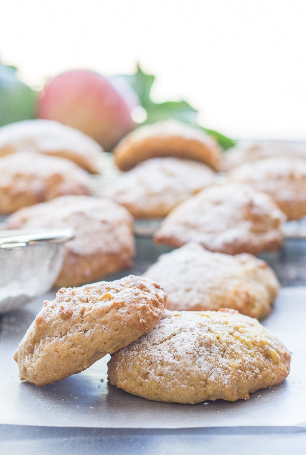 Cinnamon Applesauce Cookies, fast, easy and what a delicious cookie recipe. A moist almost cake like kid friendly cookie snack. Enjoy.