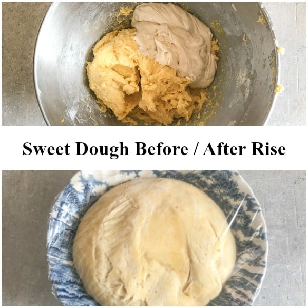 colomba sweet dough before and after rise
