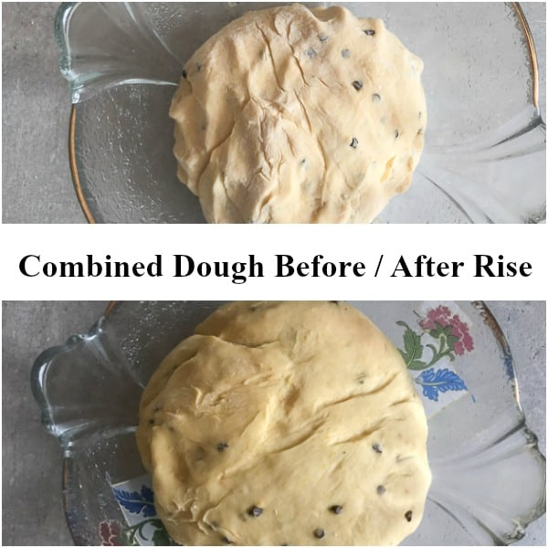 finished colomba dough before and after rise