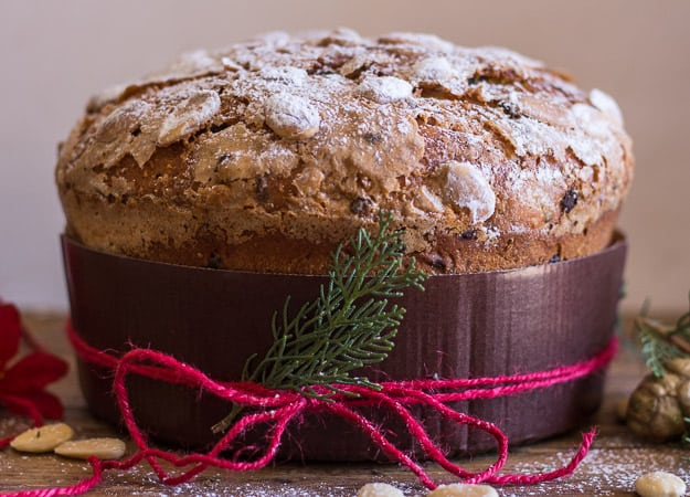 up close pic of panettone