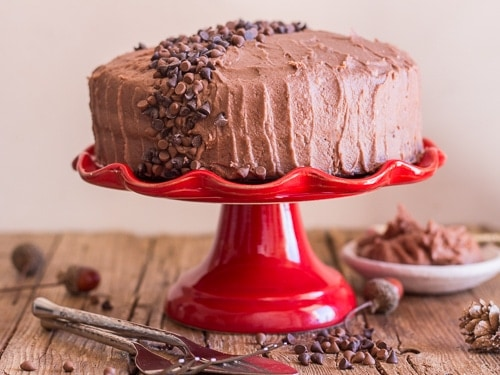 chocolate cake recipe with mocha icing and chocolate chipits on top