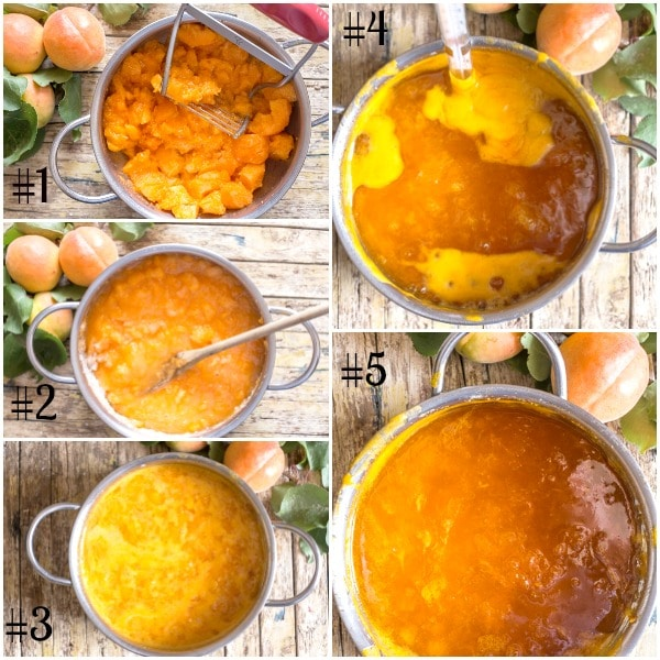 apricot jam how to, mashing apricots, heating in the pot, with a thermometer, apricot jam done