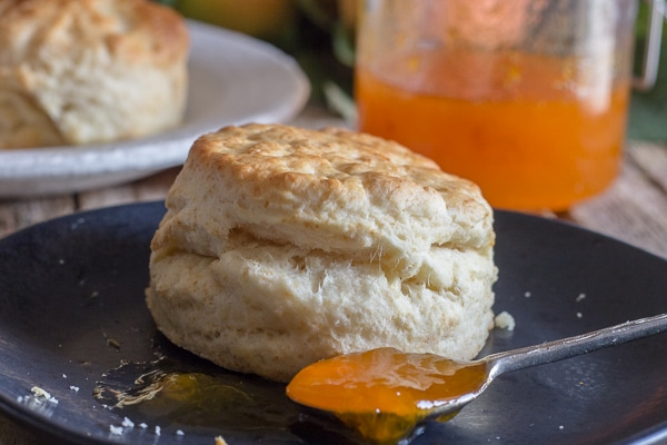 apricot jam on a spoon with a tea biscuit