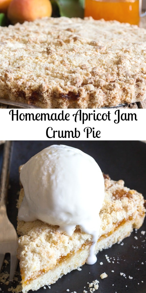 A delicious Italian Pastry Recipe, filled with a simple Homemade Apricot Jam makes this Crumb Pie the perfect end to summer dessert or snack. #pie #crumbpie #crumbcake #apricotjam #jam #apricots #fruitpie