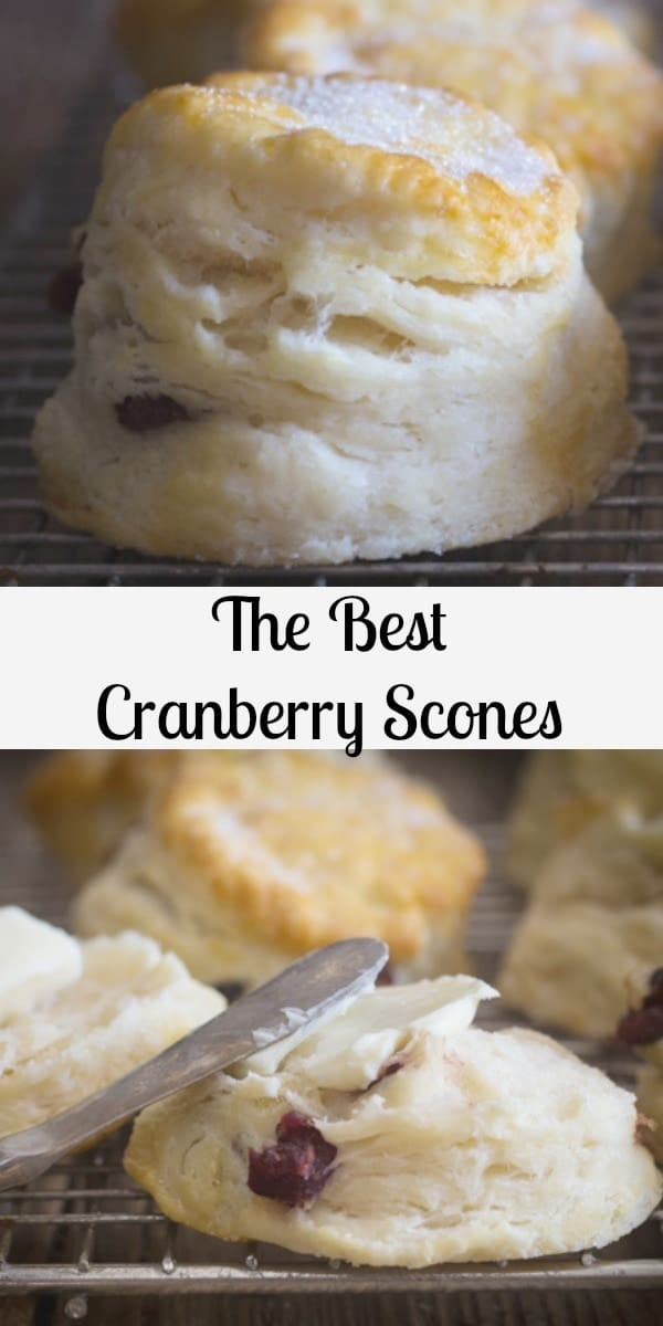 These Cranberry Scones are quick and easy, just a bowl and a fork is all you need.  The perfect scone recipe you won't be looking anywhere else for a recipe. #scones #cranberryscones #breakfast #dessert #biscuits