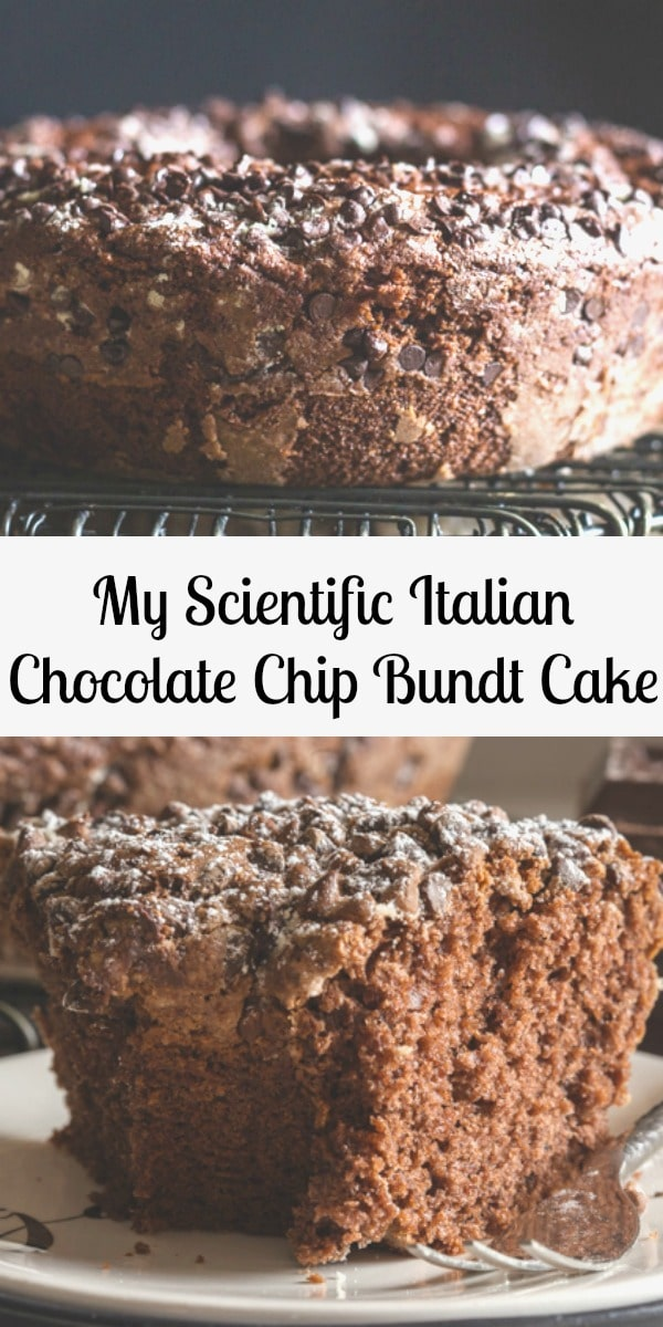 Italian Chocolate Bundt Cake, an easy soft moist Chocolate Ciambellone sprinkled with Chocolate Chips. Serve it plain or dusted with powdered sugar. #cake #chocolatecake #Italiancake #dessert #bundtcake #ciambellone