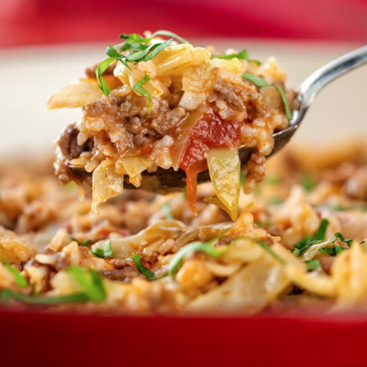 a spoonful of lazy cabbage rolls