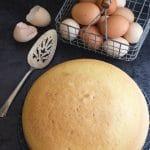 Italian sponge cake on a black board with eggs in a basket above it