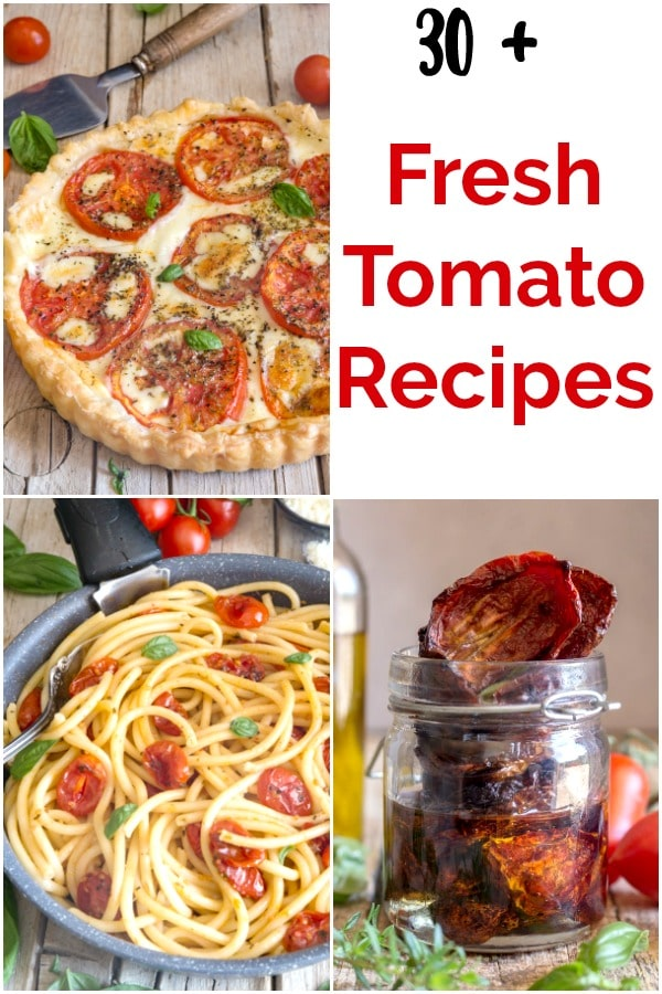 30+ fresh tomato recipes