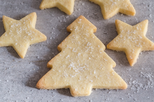 christmas tree sable cut out cookie on a grey board with 2 star cookies