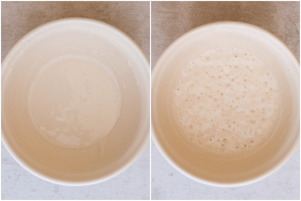 the biga in a white bowl before and after risen