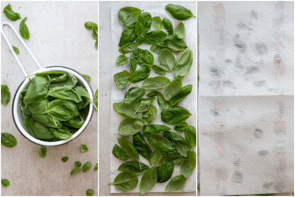 rinsing basil drying it out on paper towels