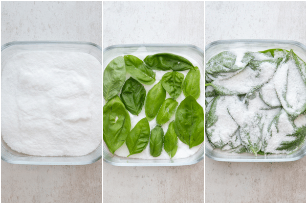 preserving the leaves in salt before and after in a glass container