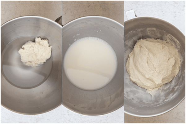 making the dough lievito madre with water and milky and making the dough