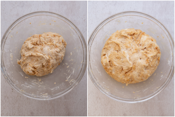 dough before and after 1st rising
