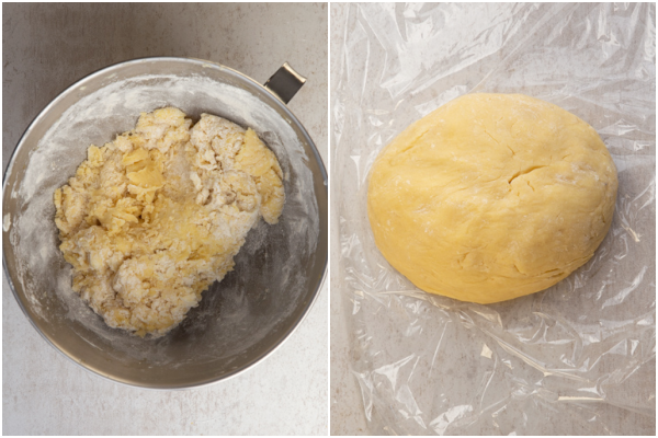 mixed just until combined and gently kneaded to form a dough
