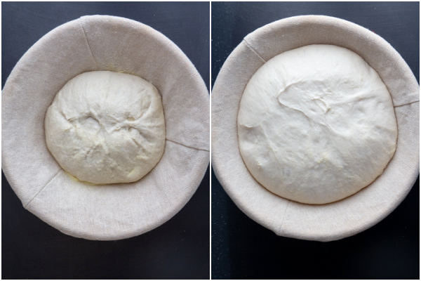 dough 2nd rise in a basket