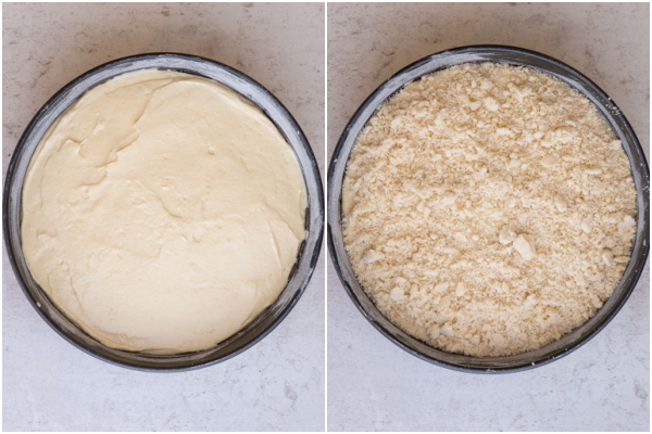 batter in the cake pan before baking with and without streusel