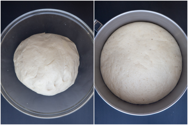 dough in a bowl before & after rising