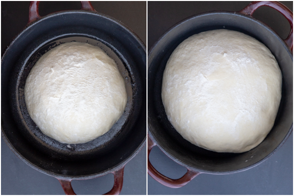 Dough in a dutch oven before and after rising.